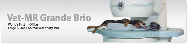Vet-MR Grande Brio World's First In-Office Large & Small Animal Veterinary MRI